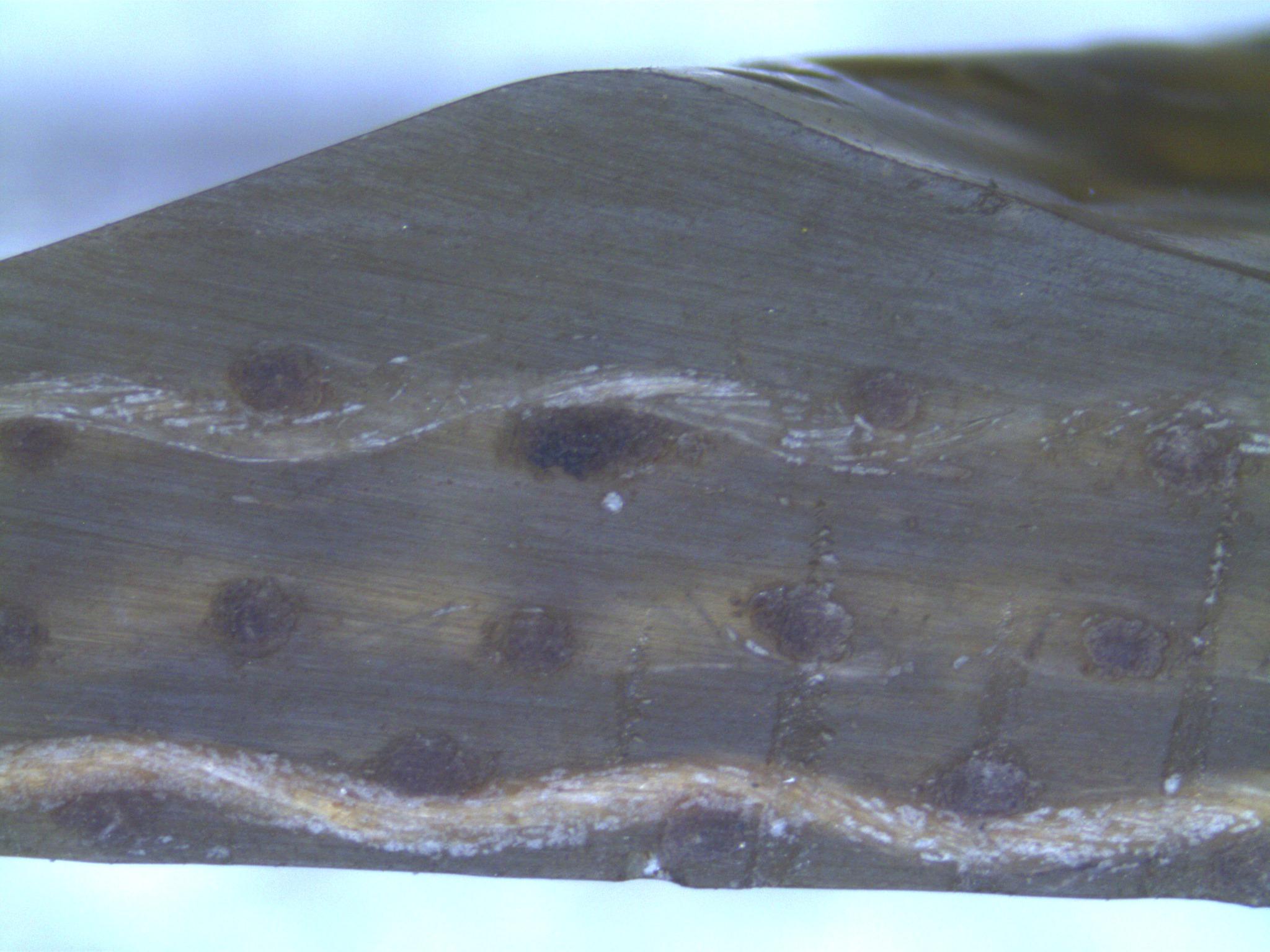 composites-microscopy/hydrostatic-side.jpg