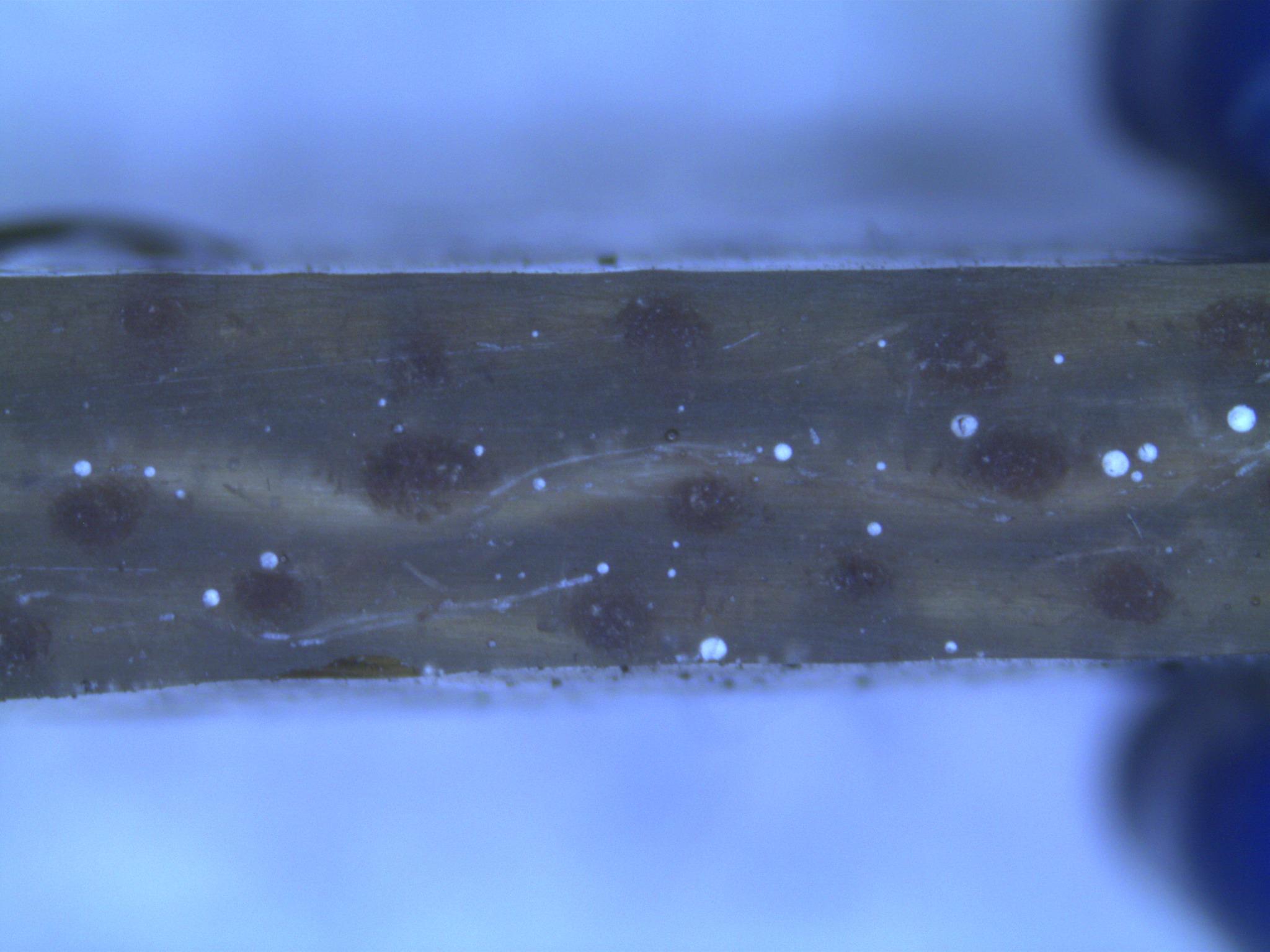 composites-microscopy/vacuum-side.jpg